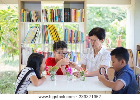 Group Of Students With Woman Teacher  Observing And Learning Flower By  Magnifying Glass On Desk At
