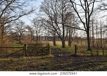 Springtime Season In A Pasture Land With An Old Wooden Gate At The Nature Reserve Beijershamn On The