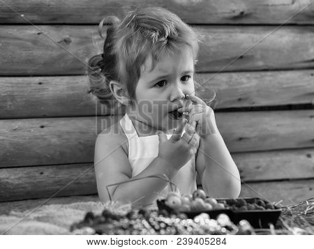 Cute Little Boy With Blond Hair Ponytail In White Pinafore Eats Red Raspberry At Rustic Table With B