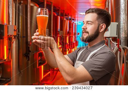Light Beer Alcohol Brewery Worker Brewer Industry