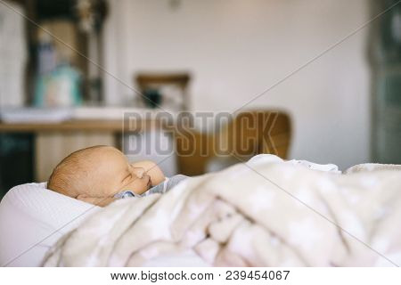 Healthy Daytime Sleep For The Newborn. A Baby In A Baby Cocoon Sleeps In A Room.