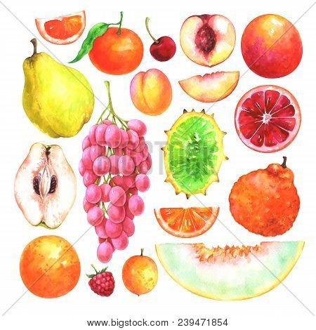 Hand Painted Fruits Set. Watercolor Collection Of Cherry, Mandarin, Apricot, Ugli Fruit, Quince, Ora