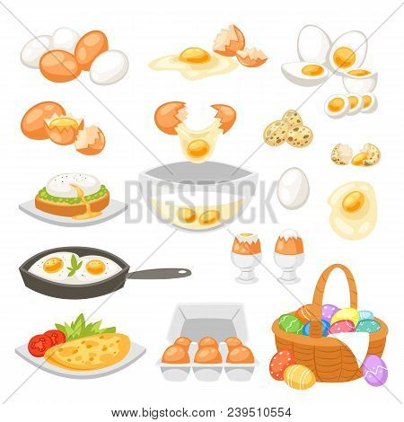 Egg Vector Easter Food And Healthy Eggwhite Or Yolk In Egg-cup Or Cooking Omelette In Frying Pan For