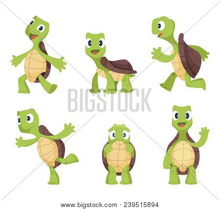 Cartoon Vector Turtle In Various Action Poses. Illustration Of Animal Tortoise, Reptile Mascot Caric