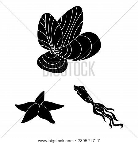 A Variety Of Marine Animals Black Icons In Set Collection For Design. Fish And Shellfish Vector Symb