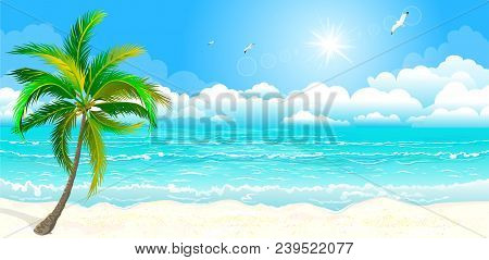 Landscape Of The Tropical Shore. The Landscape Of The Sea Shore With Palm Tree. Sea Shore With Palm