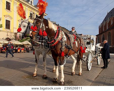 A Carriage From Krakow. Kracow, Poland - November 05, 2016 Beautifully Decorated Horses At The Carri