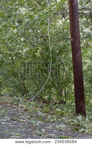 A a telephone pole utility wire lies down on a road amid tree leaves and other debris blown down and around in a storm poster