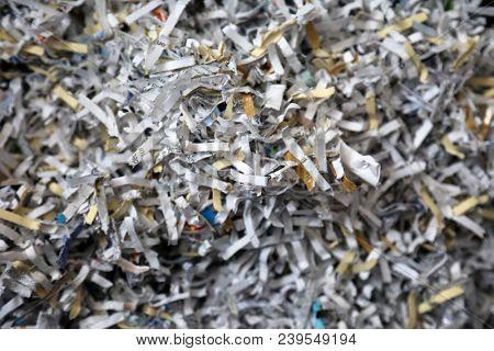 Shredded Sensitive Information. Shredded Secret Documents and information close up.
