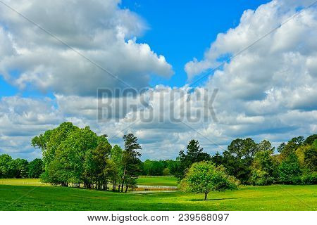 A beautiful green meadow with trees, a pond, and dramatic clouds in a blue sky.