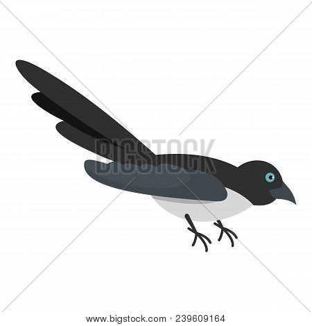 Curious Magpie Icon. Flat Illustration Of Curious Magpie Vector Icon For Web