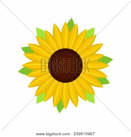 Nice Sunflower Icon. Flat Illustration Of Nice Sunflower Vector Icon For Web