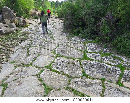 Caravan Routes And Spectacular Recreational Walks;old Roads