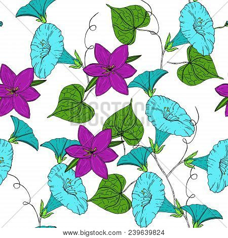 Vector Colored Pattern With Blue Bindweed And Violet Crocus On White Background. Vintage Flowers.