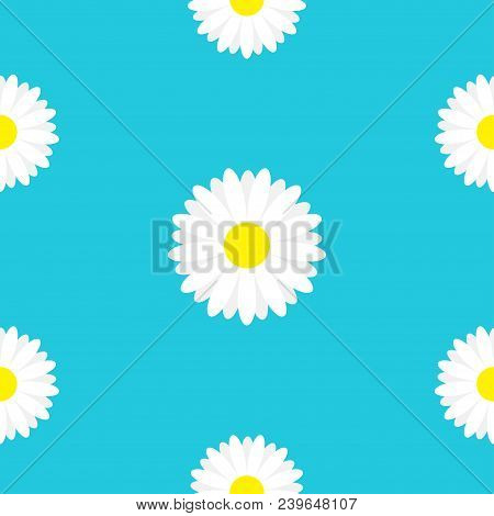 White Daisy Chamomile Marguerite Icon. Seamless Pattern. Cute Flower Plant Collection. Growing Conce