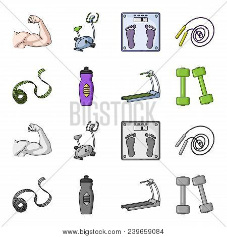 Measuring Tape, Water Bottle, Treadmill, Dumbbells. Fitnes Set Collection Icons In Cartoon, Monochro