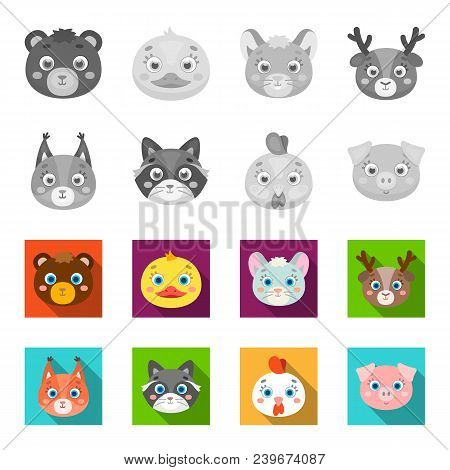 Protein, Raccoon, Chicken, Pig. Animal Muzzle Set Collection Icons In Monochrome, Flat Style Vector