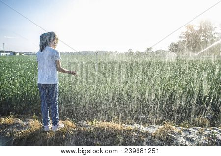 Child Girl Under Sprinklers At Work With Backlit Sunrays At Onions Field. Guadiana Meadows, Badajoz,