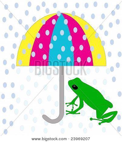 Green frog under umbrella