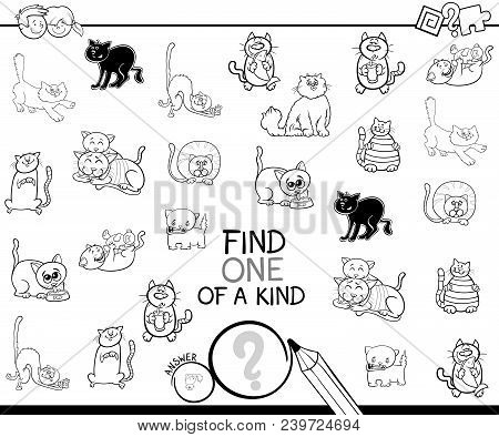 One Of A Kind Game With Cat Coloring Book