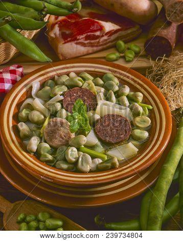 Spanish Cuisine. Broad Beans, Catalan Style. Habas A La Catalana. Fabes A La Catalana.