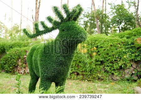 Figure Of Deer Made Of Green Lawn Grass In The Park, Free Space. Green Grass Covered Topiary Deer, L