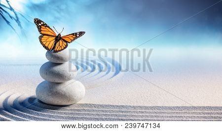 Butterfly On Spa Massage Stones In Zen Garden