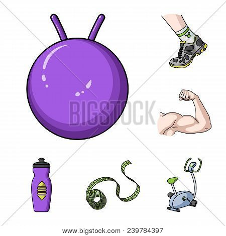 Fitness And Attributes Cartoon Icons In Set Collection For Design. Fitness Equipment Vector Symbol S