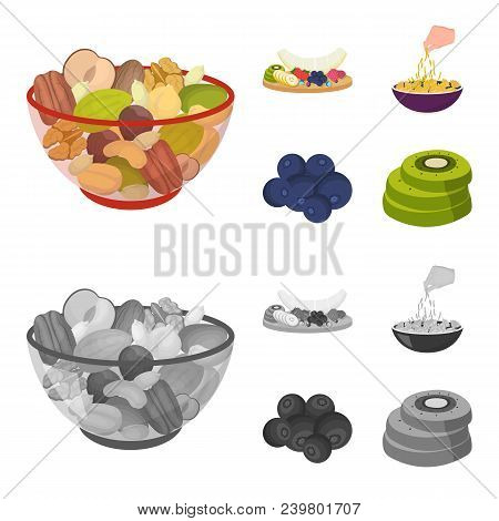 Assorted Nuts, Fruits And Other Food. Food Set Collection Icons In Cartoon, Monochrome Style Vector