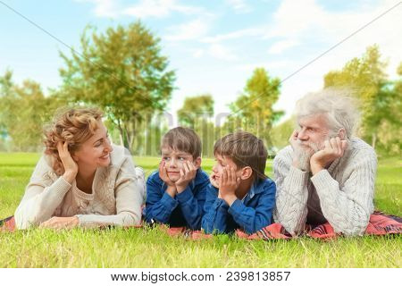Cute little boys with grandparents in park on sunny day