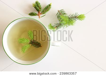 A Cup Of Spruce Tea With Fresh Plant On A Table, Popular Healing Powers Of Young Shoots Twigs Are Kn