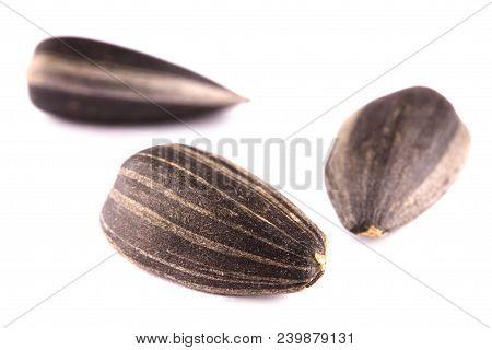 Sunflower Seeds, Sunflower Grains, Seed Shell, Sunflower Seeds Background. Sunflower Seeds Photo, Bl