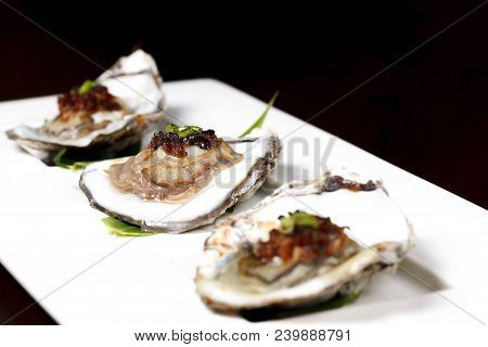 Oysters On The Half Shell Half, Oysters, Seafood, Fresh, Whit