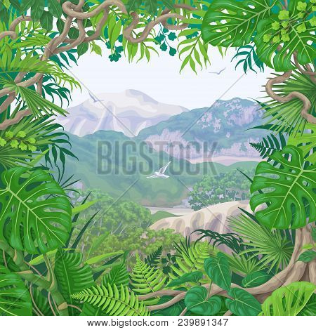 Summer Background With Green Leaves Of Tropical Plants And Liana Branches. Jungle Frame On Hills, Fl