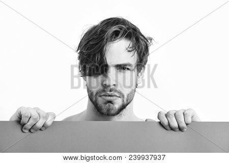 Bearded Man, Short Beard. Caucasian Sexy Young Serious Macho With Stylish Beard And Moustache Holdin