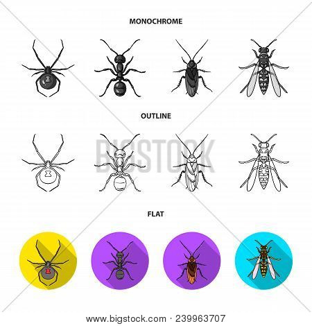 Spider, Ant, Wasp, Bee .insects Set Collection Icons In Flat, Outline, Monochrome Style Vector Symbo