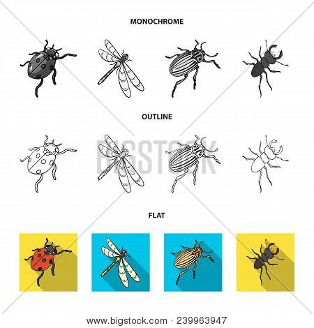 Arthropods Insect Mosquito, Bee.earth Worm, Caterpillar, Vermicular Set Collection Icons In Flat, Ou