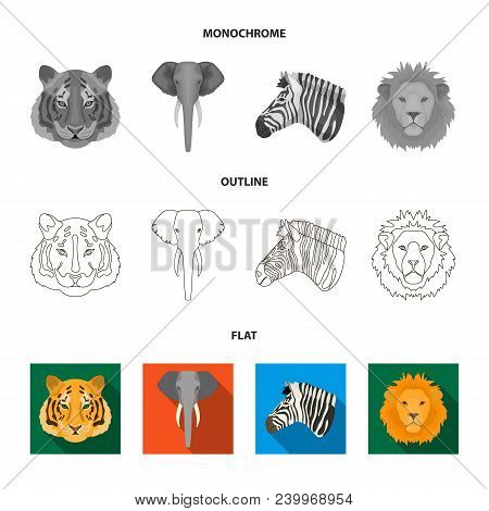 Panda, Giraffe, Hippopotamus, Penguin, Realistic Animals Set Collection Icons In Flat, Outline, Mono
