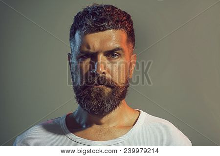 Portrait Of Bearded Man Face With Stylish Hairstyle In White Shirt. Confidence And Success. Sexy Mal