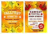 Autumn fall fest and October music festival invitation leaflet or poster template of autumn maple, oak acorn and elm tree leaf background. Vector seasonal outdoor event garden park picnic flyer poster