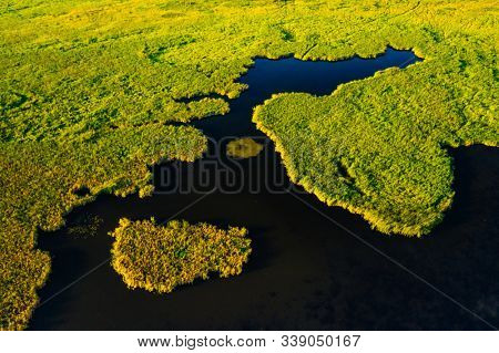 Lush wetlands of bird's eye view. Green field background. Location place of Ukraine countryside, Europe. Textural image of drone photography. Exotic nature wallpapers. Discover the beauty of earth.