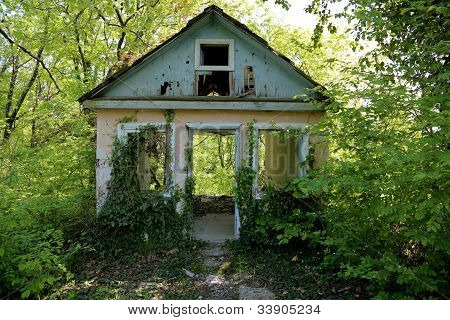 an abandoned old house in the woods, overgrown with vines poster