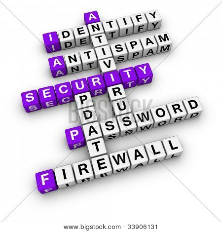 computer security  (blue-white cubes crossword series)