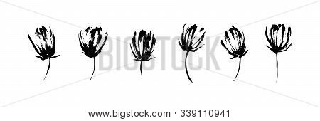 Hand Drawn Abstract Modern Flowers Set Painted By Ink. Grunge Style Brush Painting Vector Blossom Si