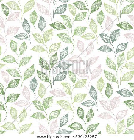 Packaging Tea Leaves Pattern Seamless Vector. Minimal Tea Plant Bush Leaves Floral Textile Design. H