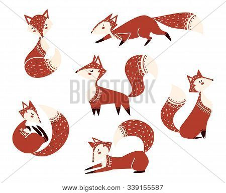Cute Cartoon Foxes Characters Collection