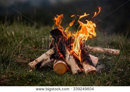 Bonfire. Orange Flame Of A Fire. Bonfire On The Grill With Smoke. Bonfire Background. Campfire Surro