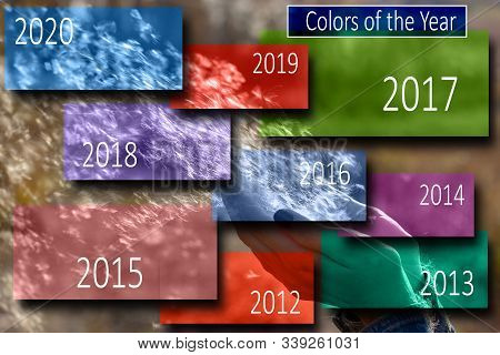 Colors Of The Year, Trend Colors Of Last Years. Airborne Fluff From Cattail Flies Out Of The Girl's