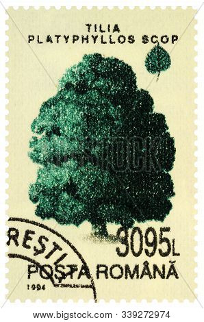 Moscow, Russia - December 11, 2019: Stamp Printed In Romania Shows Large-leaved Lime Or Large-leaved
