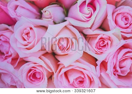 Soft Focus With A Bouquet Of Pink Roses, Closeup Shot Of A Bouquet Made Up Of Pink Roses, Bouquet Of